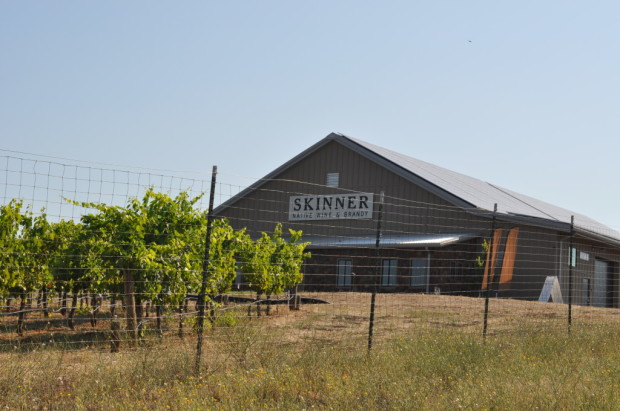 visiting Skinner winery
