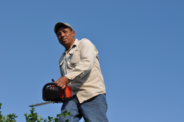 Julio Deras, Vineyard Manager