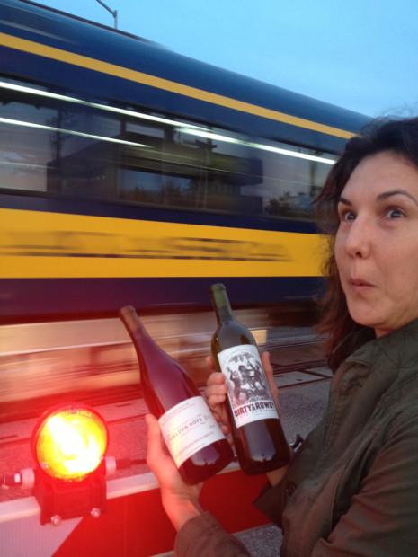The Alaska (tourist) train