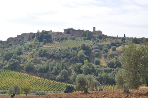 Looking towards the hamlet of Castelnuovo dell'Abate