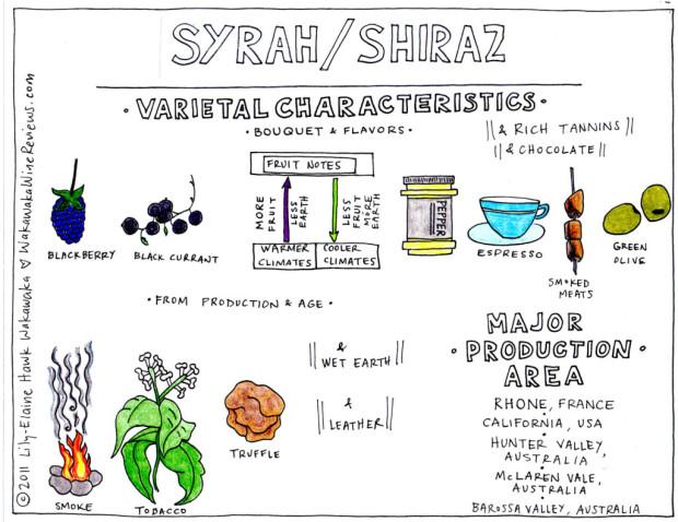 Syrah Characteristics
