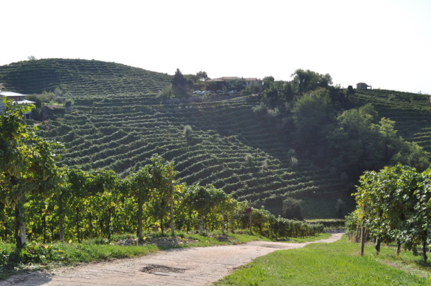 Over the hillsides of Valdobbiadene
