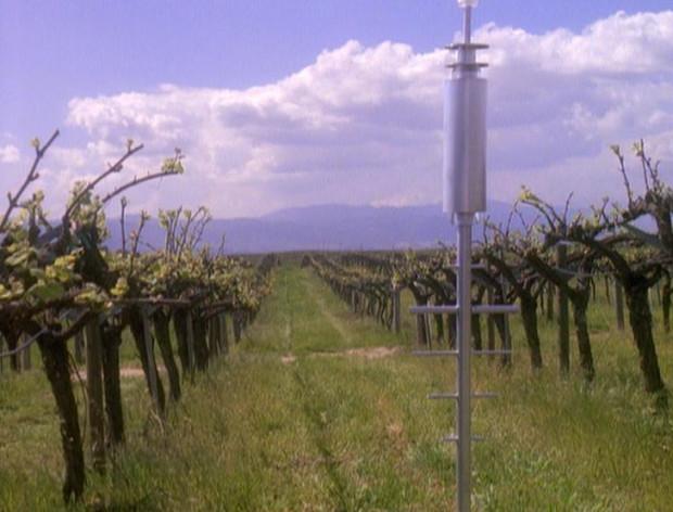 Callaway_vineyard__winery-620x472