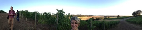 Jr acting normal in Antica Terra Vineyard