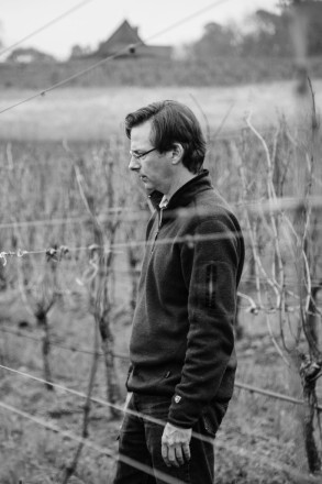 Michael McNeil Pruning Ambassadors Vineyard