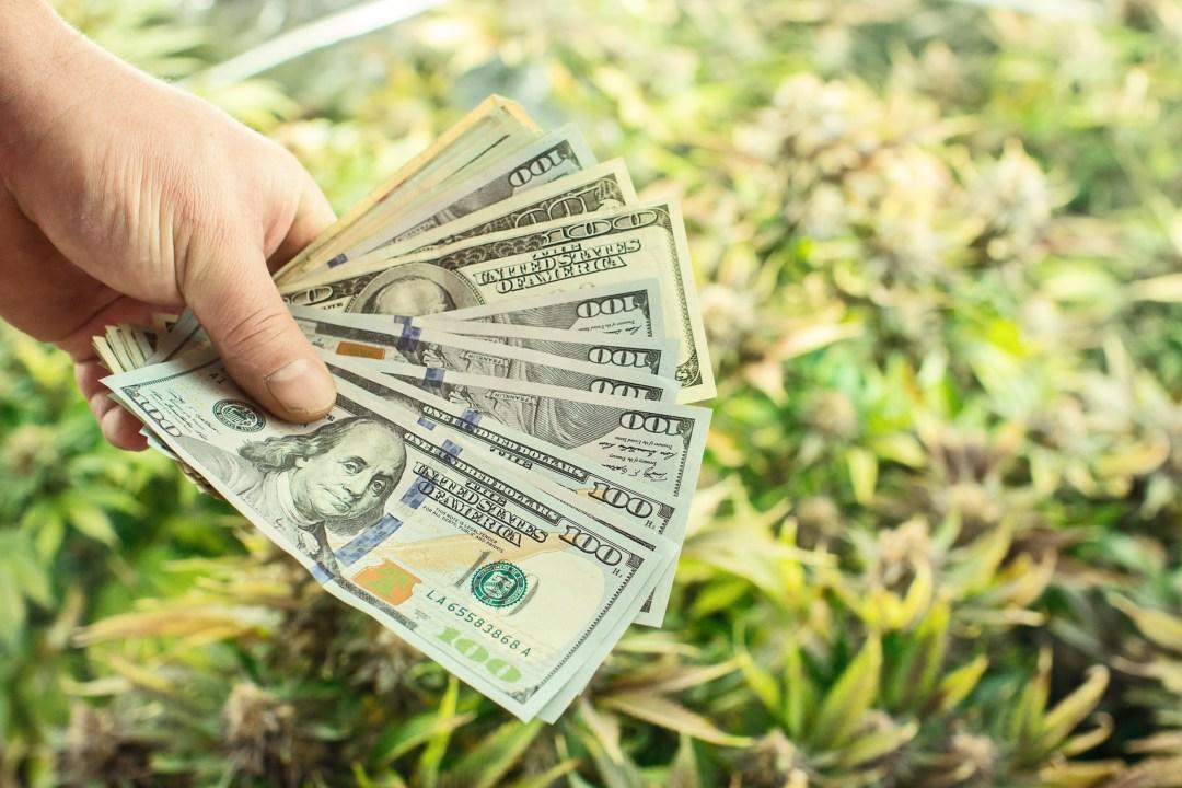 wasting money on cannabis