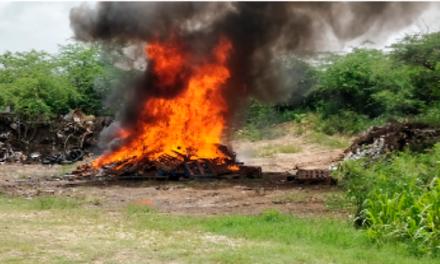 Antiguan Police Burn Over $1.5 Million In Seized Cannabis