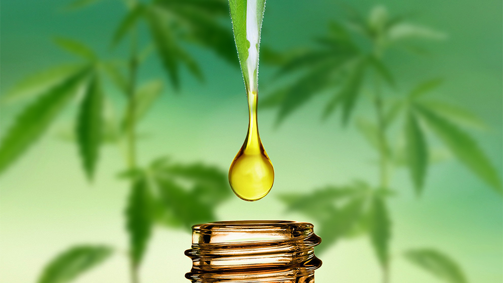The Organic Authority Publishes 3 Part FAQ Guide To Everything You Need To Know About  CBD