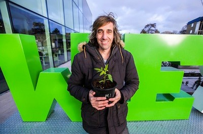 Dutch Man Turns Himself In To Police For Growing 5 Plants