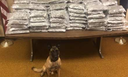 Indiana Police Doggy Sniffs Out The Big One – California Man Traffic Stop Hauls In 160lbs Of Weed
