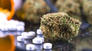 Scientists Just Learned How Cannabis Makes Molecules 30x More Effective Than Aspirin