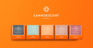 CANNDESCENT Names Sam Arellano As Chief Marketing Officer