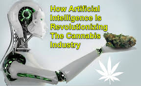 Article: How Is AI Driving The Cannabis Industry