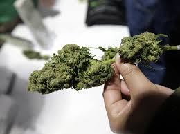 Weed Costs In UK Up From £100 an Ounce To As High As £250 An Ounce