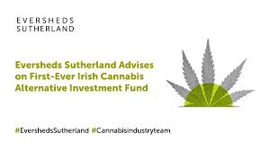 Medical cannabis private equity fund established