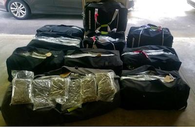 USA: Brothers arrested in Mayfield with 471 pounds of marijuana