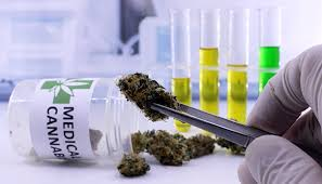 US Spent $1.49B On Cannabis Research from 2000-2018