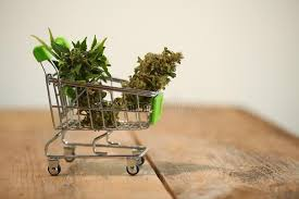 Scottish Police spot dealers wheeling cannabis plants down the street in shopping trolley