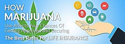 Smoke Weed and Need Life Insurance? Some Companies Are Cool With Marijuana