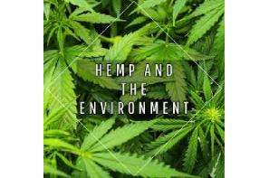Volteface Article: Exploring the Environmental Benefits of Hemp