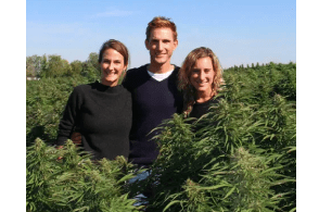 USA – Press Release: 'We Have Our Own Standards': Prima Borrows Honest Co's Approach for the CBD Market