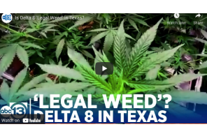 Is Delta 8 'Legal Weed' in Texas?