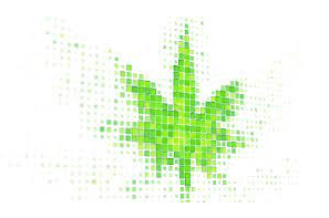The Art of Terpene Recreation: Replicating Cannabis Strain Profiles