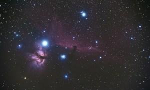 Horsehead Nebula by Vicky Bennett