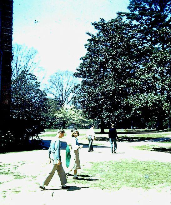 Campus View 2