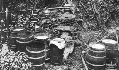 Picture of moonshine still in NC mountains.
