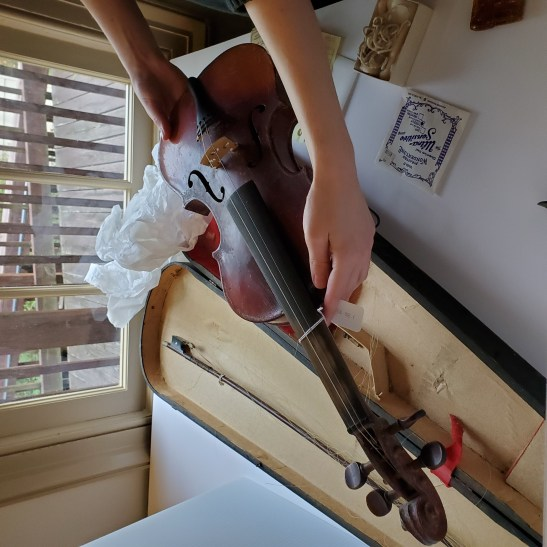 Arms holding violin