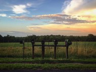 Mailboxes in front of Homeplace Farm