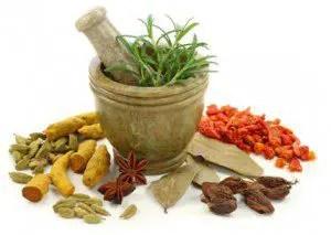 Ayurvedic Medicinal Plants