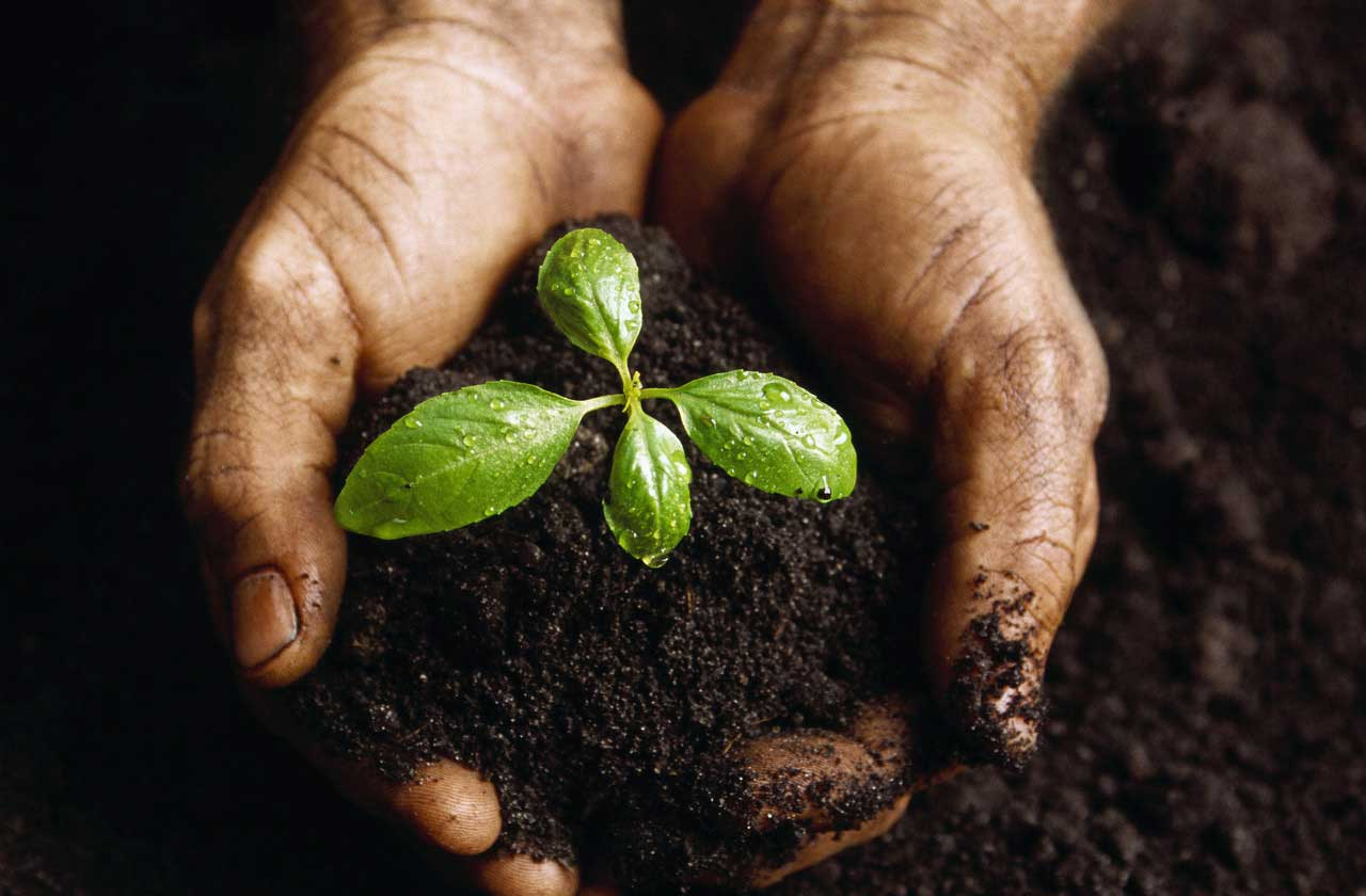 Permaculture – Reconnect with Nature, Supply Your Own Resources