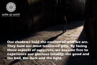 "INNER ACTIVISM - Ensuring ""We"" Don't Become ""Them"" - the shadow within 1"