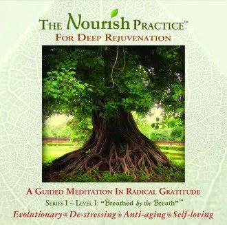 Jack Adam Weber - The Nourish Practice