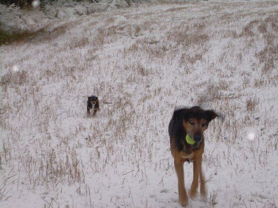 con aarón, jugando en la nieve