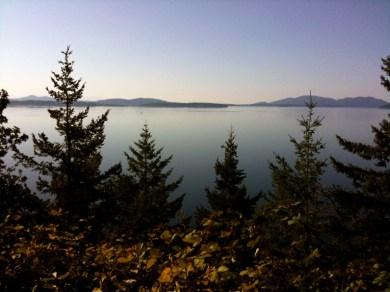 WA State view