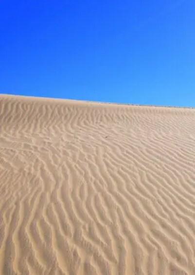 mungo sand