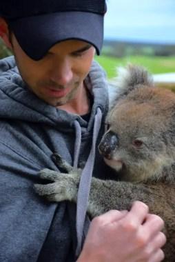 koala mike