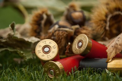 hunting-rifles-3