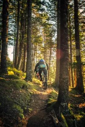 bike-biking-2