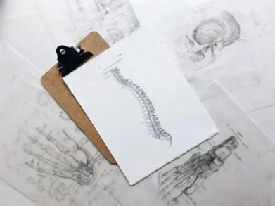 chiropractic-health-4