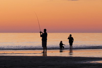 fish-fishing-1