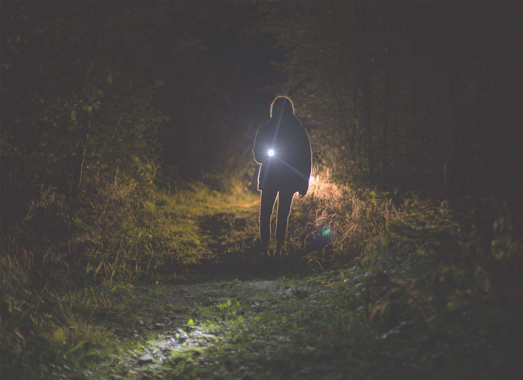Types of Flashlights for Late Night Hiking and Camping ...