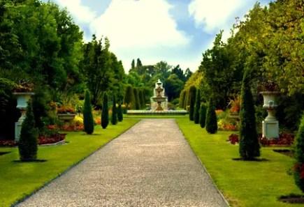 royal-garden-2529542