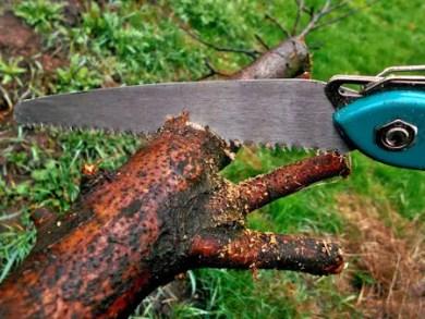 sawing-1318871_1920