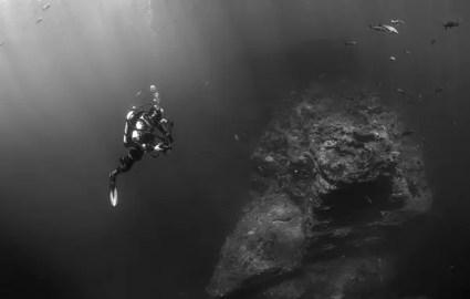 scuba-diver-569333_1920
