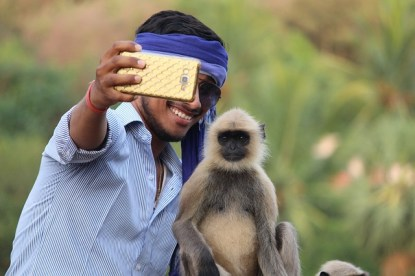 selfie-with-monkey-3446978_640