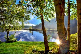 summer-landscape-1500748
